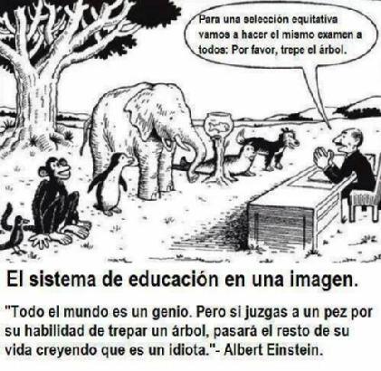 El Sistema Educativo en una imagen
